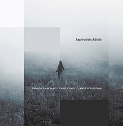 Chrysakis, Thanos / Chris Cundy / James O'Sullivan: Asphodels Abide (Aural Terrains)