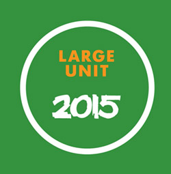 Large Unit: 2015 [BOOK + 2 CDS]