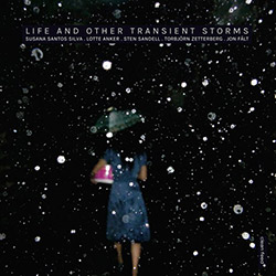 Silva / Anker / Sandell / Zetterberg / Falt: Life and Other Transient Storms