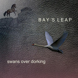 Bay's Leap: Swans Over Dorking