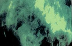 Lipchitz: Lipchitz [CASSETTE] (Wee Space Tapes)