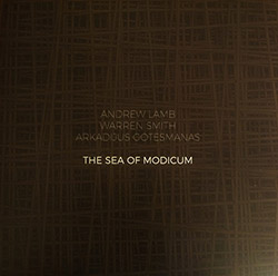 Lamb, Andrew / Warren Smith / Arkadijus Gotesmanas: The Sea of Modicum [VINYL]