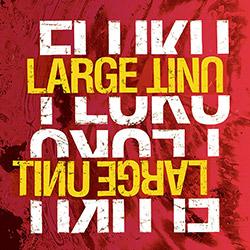 Large Unit: Fluku