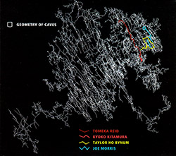 Reid, Tomeka / Kyoko Kitamura / Taylor Ho Bynum / Joe Morris: Geometry of Caves