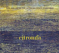 Mezei, Szilard Tul A Tiszan Innen Ensemble: Citromfa [2CDS] (FMR)