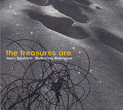 Sjostrom, Harri / Guilherme Rodrigues: The Treasures Are <i>[Used Item]</i> (Creative Sources)