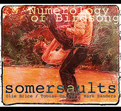 Somersaults (Olie Brice / Tobias Delius / Mark Sanders): Numerology of Birdsong (West Hill Records)