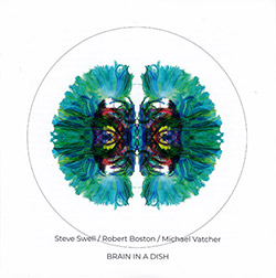 Swell, Steve / Robert Boston / Michael Vatcher: Brain In A Dish (NoBusiness)
