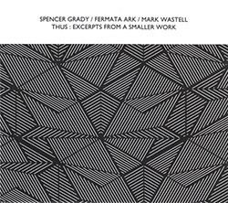 Grady, Spencer / Fermata Ark / Mark Wastell: Thus : Excerpts From A Smaller Work (Confront)