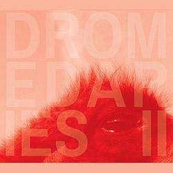Neuringer, Keir / Shayna Dulberger / Julius Masri: Dromedaries II (Relative Pitch)