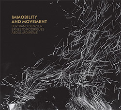 Denzler / Rodrigues / Moimeme: Immobility and Movement (Creative Sources)
