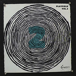 Playfield (Carter, Muhr, Ishito, Plaks, Namenwirth, Takahashi, Swanson, Panikkar): Vol. 2