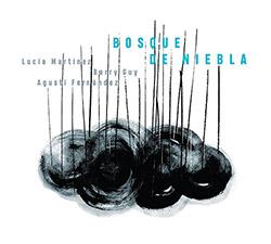 Martinez, Lucia / Agusti Fernandez / Barry Guy: Bosque de niebla [2 CDs]