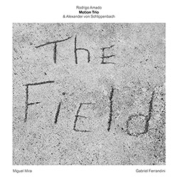 Amado, Rodrigo Motion Trio / Alexander von Schlippenbach: The Field (NoBusiness)