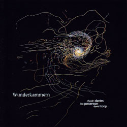Davies / Patterson / Toop : Wunderkammern (Another Timbre)