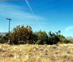 Jerman, Jeph: Abandoned Telephone Wire (AARC)