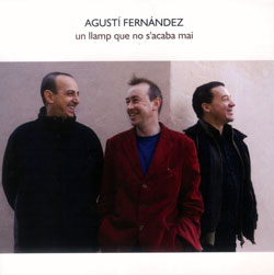 Fernandez, Agusti: Un Llamp Que No S'acaba Mai