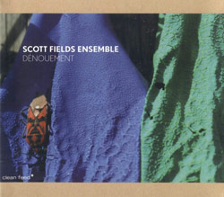 Fields Ensemble, Scott : Denouement (Clean Feed)